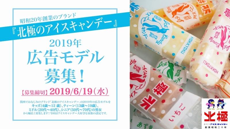 昭和20年創業のブランド『北極のアイスキャンデー』2019年広告モデル募集!